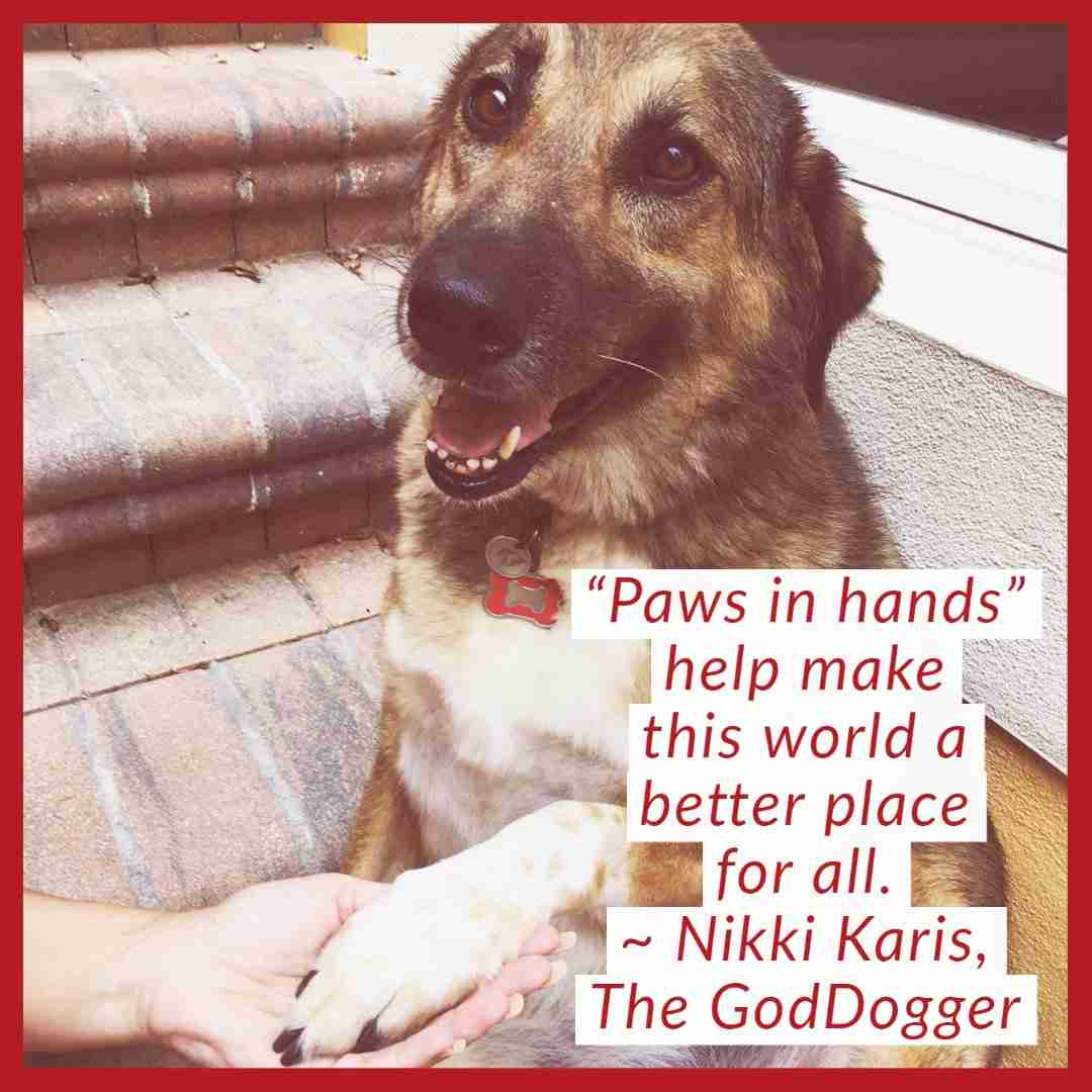 GodDogs and Pet Souls Message
